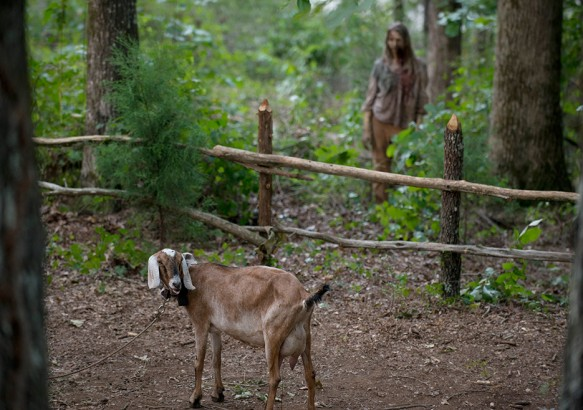 the-walking-dead-episode-604-Tabitha-935